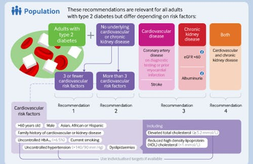 A visual summary of recommendations on SGLT-2 inhibitors or GLP-1 receptor agonists